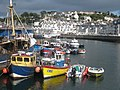 Fishing boats in Brixham harbour - geograph.org.uk - 1446099.jpg