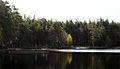 Fiskare Nävsjön Nyköpings kommun.jpg