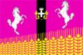 Flag of Shkurinskoe (Krasnodar krai).png