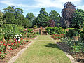 Flickr - Duncan~ - Orpington Priory Gardens.jpg