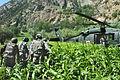 Flickr - The U.S. Army - Insurgent evacuation.jpg