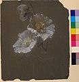 Floral Design MET 28.40.8.jpg