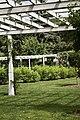 Flower Trellis Garden, Forest Park, Springfield, Massachusetts - panoramio.jpg