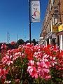 Flowers in Sutton High Street, SUTTON, Surrey, Greater London - Flickr - tonymonblat.jpg