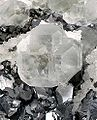 Fluorite-Galena-Quartz-flu41c.jpg