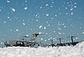 Flurry of foam released at Travis (5).jpg