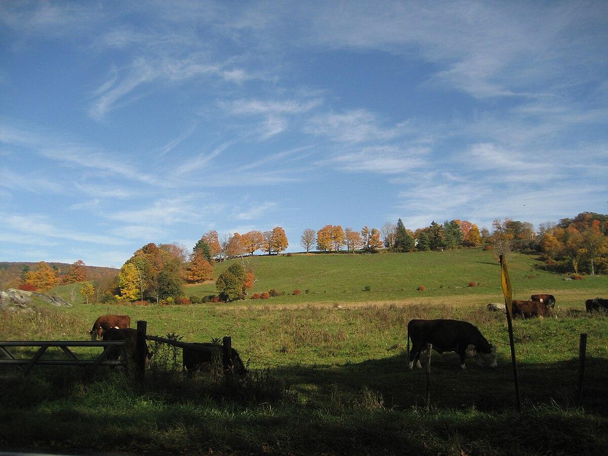 View of a farm in Richmond