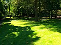 Follow The Light - panoramio.jpg