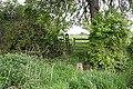 Footbridge, Stile, and Old Gate - geograph.org.uk - 793250.jpg