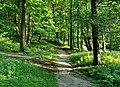 Footpath - panoramio (3).jpg