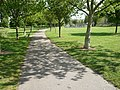 Footpath through the park, East Street, Colchester - geograph.org.uk - 1309148.jpg