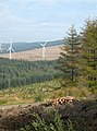 Forest View - geograph.org.uk - 577538.jpg