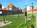 Fosa zamku krzyżackiego w Toruniu1.jpg