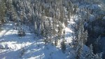 File:Fresh Powder coats the forests of Gallagher's Canyon, British Columbia.webm