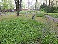 Friedhofspark Pappelallee (48).jpg