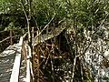 Funtana Dino park - panoramio (2).jpg