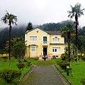 Furnas, S. Miguel, Açores,Portugal - panoramio (4).jpg