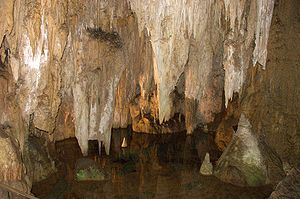 Furong Cave - Stalactites in the Furong Cave