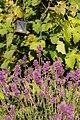 Garden Art (21905175285).jpg