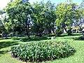 Garden in Poliforum Mier y Pesado in Orizaba, Veracruz.jpg