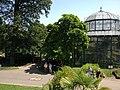 "Garden landscape in the zoo of Stuttgart ""Wilhelma"" - panoramio (9).jpg"