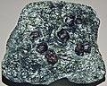 Garnet-chlorite schist (Alabama, USA) (49155351038).jpg