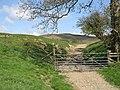 Gate, Great Cantel - geograph.org.uk - 1470519.jpg