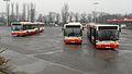 Gdańsk Wrzeszcz zajezdnia autobusowa (autobusy Mercedes).JPG