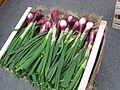 Gemüse auf einem Markt in Gallicano 01.jpg