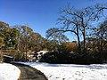 Georgia snow IMG 5474 (27191415279).jpg