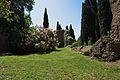 Giardino di ninfa - chiesa di Santa Maria Maggiore - Abside ed albero della nebbia (sulla sinistra).jpg