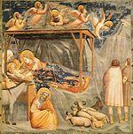 La Natività (Giotto)