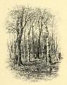 Girard - Florence, 1900 - illust p55.png