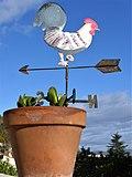 Girouette sur un pot de fleurs.jpg