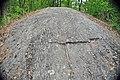 Glaciated knob of gneiss (Proterozoic; Port Leyden, western Adirondacks, New York Sate, USA) 4 (40878139181).jpg