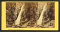 Glen Ellis Falls, White Mountains, N.H, by Bierstadt Brothers.png