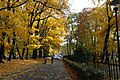 Gliwice - Park Chopina - panoramio (9).jpg