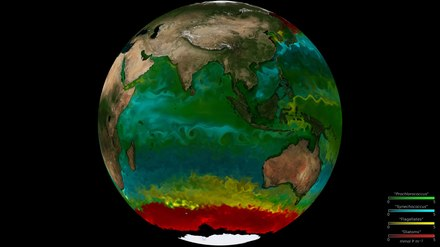 File:Global phytoplankton distribution - NASA.webm