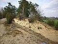 Gmina-Krzywda-090413-A-29.jpg