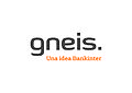 Gneis Global Services.jpg
