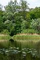 Goloseevsky Park. Orekhovatskie ponds, spring. 05.jpg