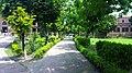 Government College University, Lahore3 Damn Cruze 2018.jpg