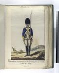 Granaderos Voluntarios de Estado fueron creados Año, de 1794 (1797) (NYPL b14896507-87709).tiff