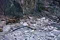 Grand Canyon Flood of 1966 Bright Angel Canyon 0410 - Flickr - Grand Canyon NPS.jpg