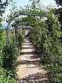 Granville - Jardin de Dior.jpg