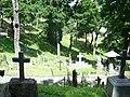Graves in Vilnius Rasos cemetery 7.jpg