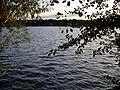 Grays Lake Moore View.JPG