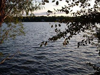 Grays Lake (Illinois) - Image: Grays Lake Moore View