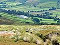 Green fields in Farndale - geograph.org.uk - 895147.jpg