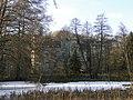 Gresse Herrenhaus Schlossteich 2010-12-01 030.JPG